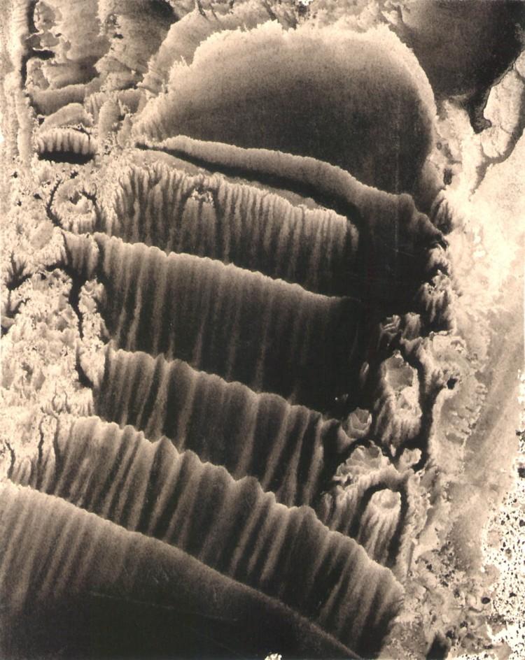 images5cxjcua-194543